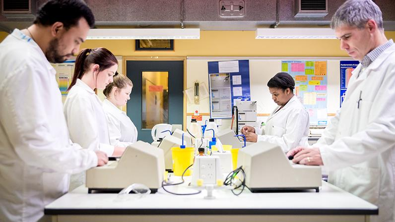 Students prepare to be lab technicians at our Palmerston North campus